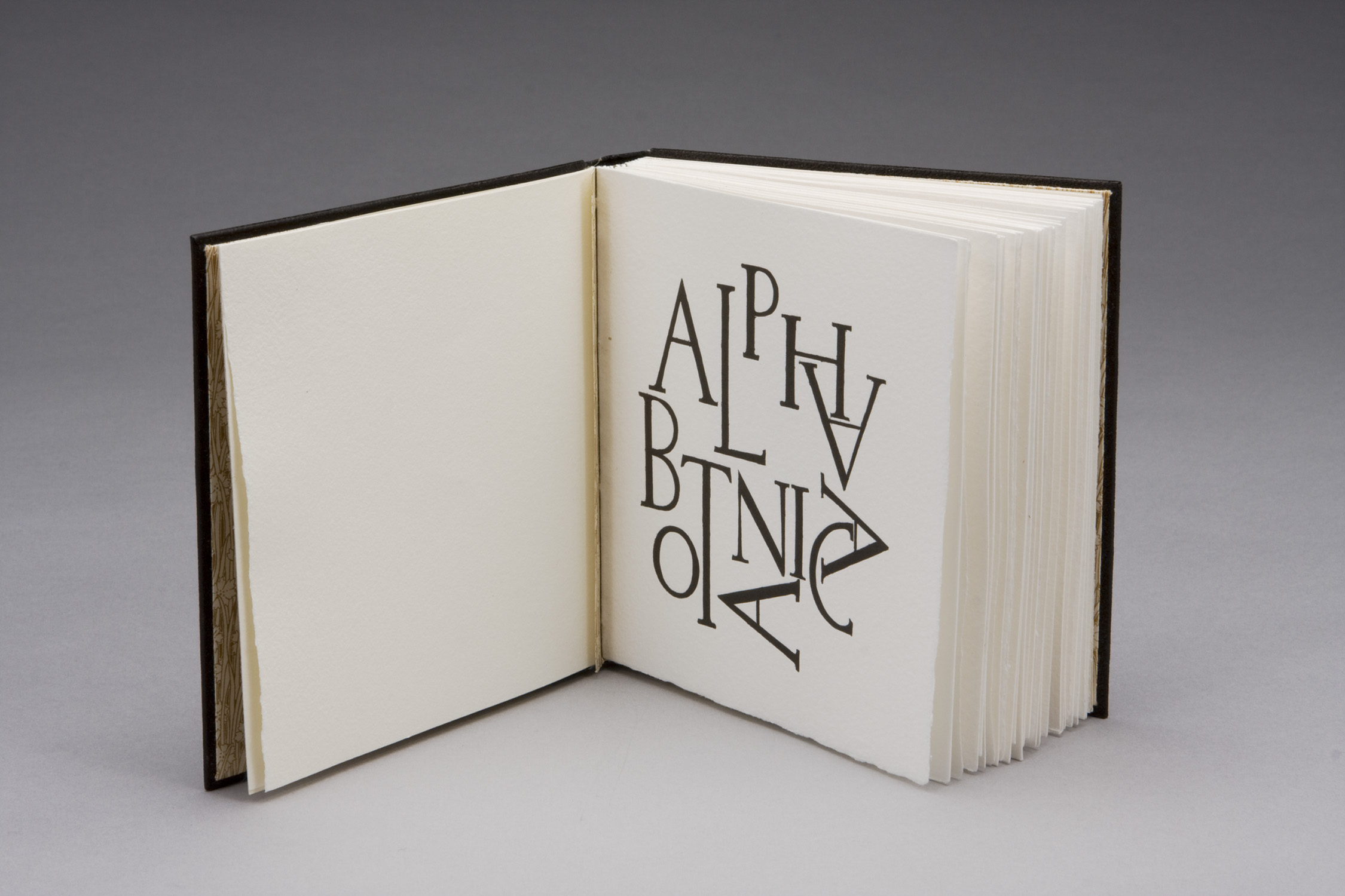 Sarah Horowitz and Claudia Cohen   Alpha botanica (Roman and Hebrew abecedaruim of engraved botanical capitals), 2007  51 wood engravings with letterpress on Velke Losiny paper in a leather binding with gold foil stamping