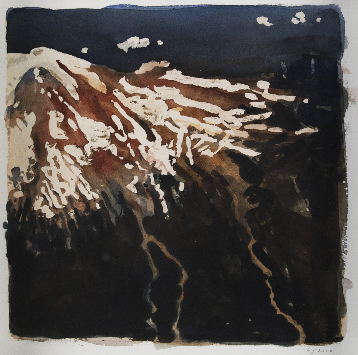 Claire Johnson   Study- Ascension (Wounded Gull), 2010  Watercolor