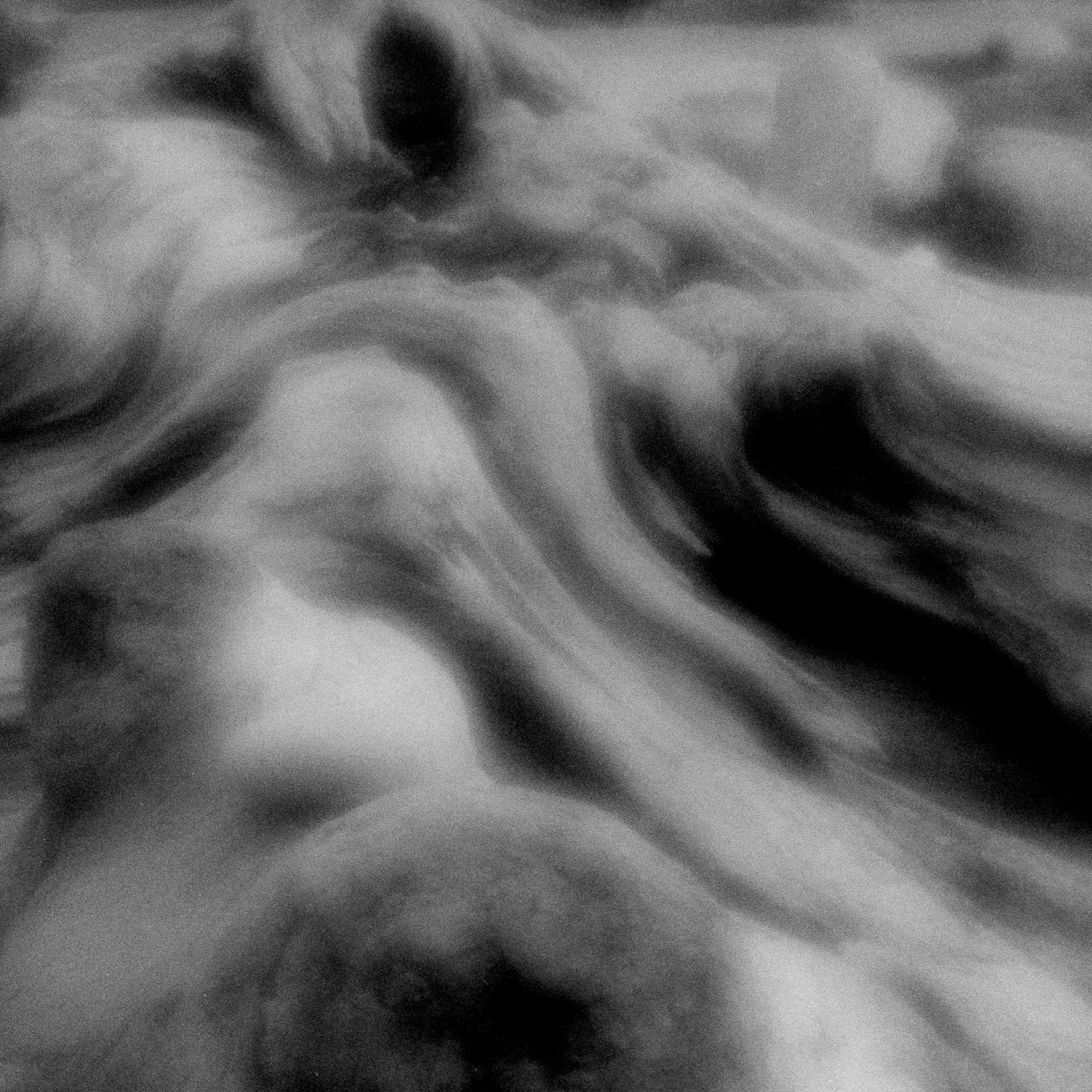 "Jane Alynn  ""Driftwood,"" 2016  zone plate image, gelatin silver print  Anacortes, WA  10""x10""x0""  $350"