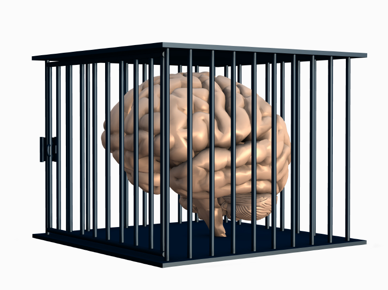 brain behind bars.jpg