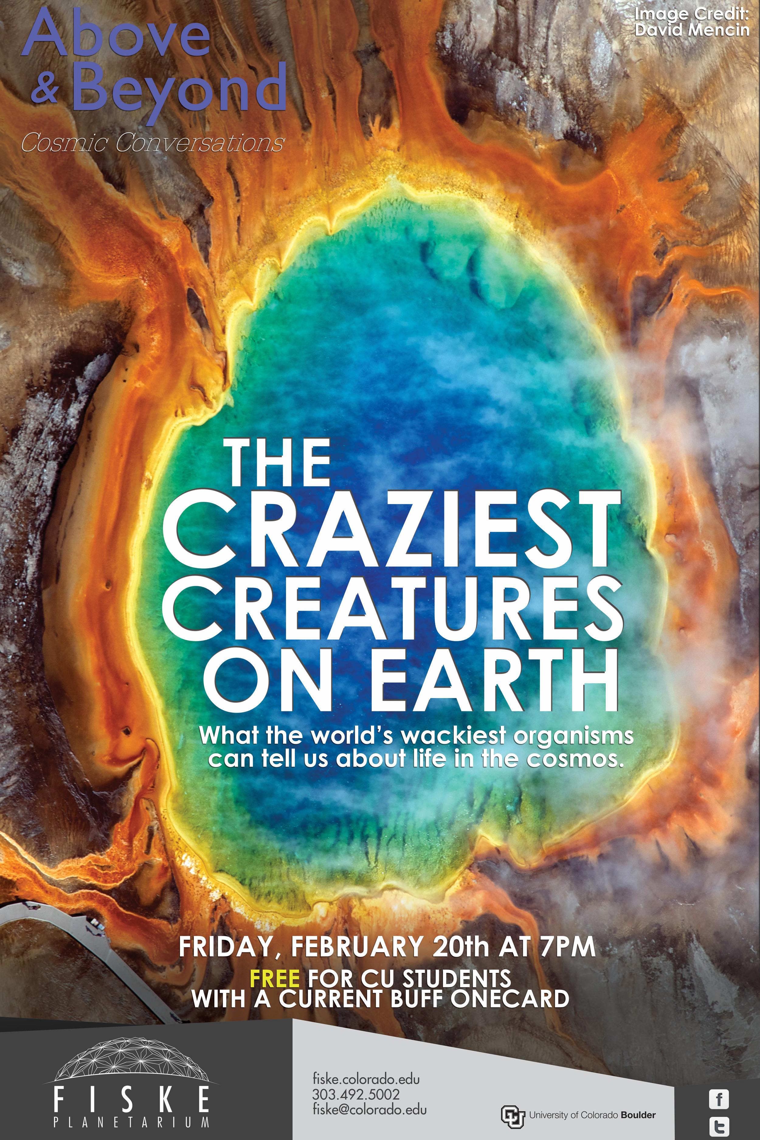Craziest-Creatures.jpg
