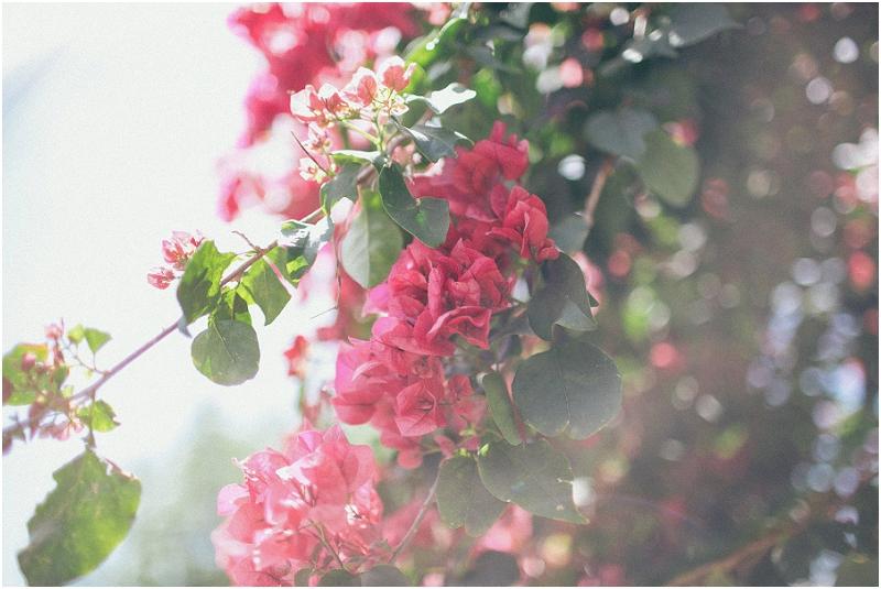 New Orleans Wedding Photographer - Krista Turner Photography - NOLA Wedding Photographer (4).jpg