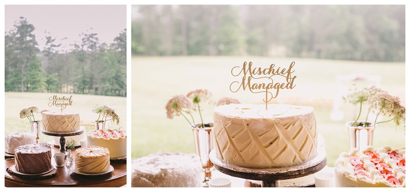 Krista Turner Photography - Atlanta Wedding Photographer - The Farm Rome GA (584 of 743).jpg