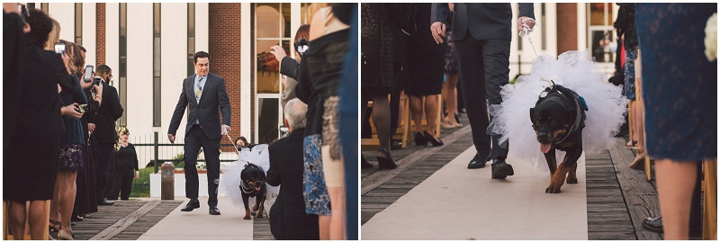 New Orleans Wedding Photographer - Krista Turner Photography - Atlanta Wedding Photographer (481 of 659).jpg
