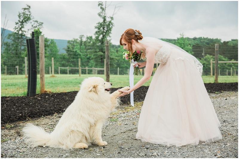 Atlanta Wedding Photographer - Krista Turner Photography_0907.jpg