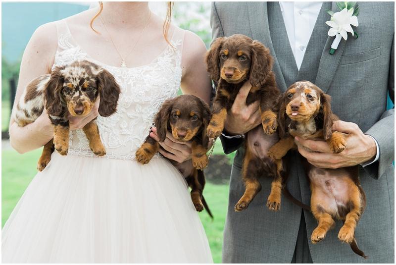 Atlanta Wedding Photographer - Krista Turner Photography_0912.jpg