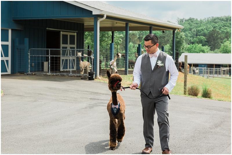 Atlanta Wedding Photographer - Krista Turner Photography_0928.jpg