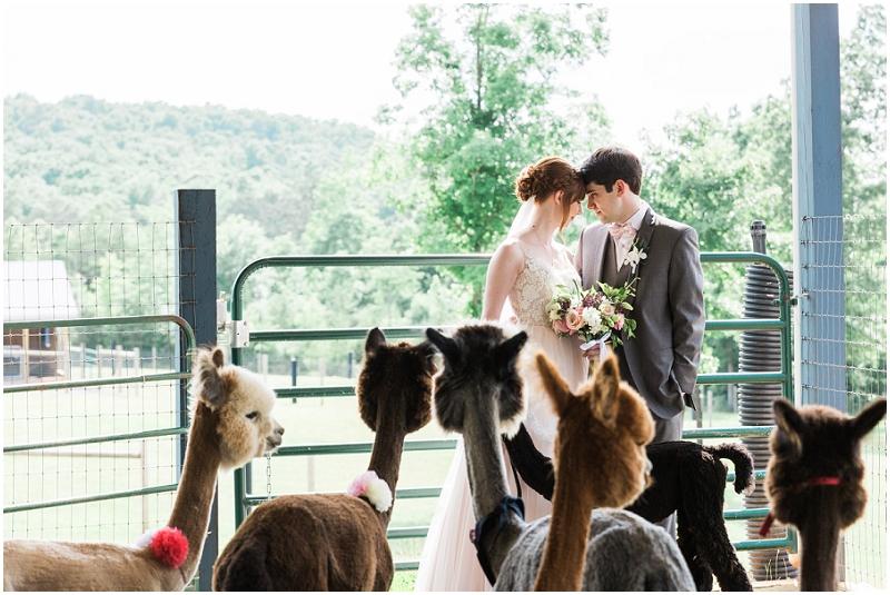 Atlanta Wedding Photographer - Krista Turner Photography_0939.jpg