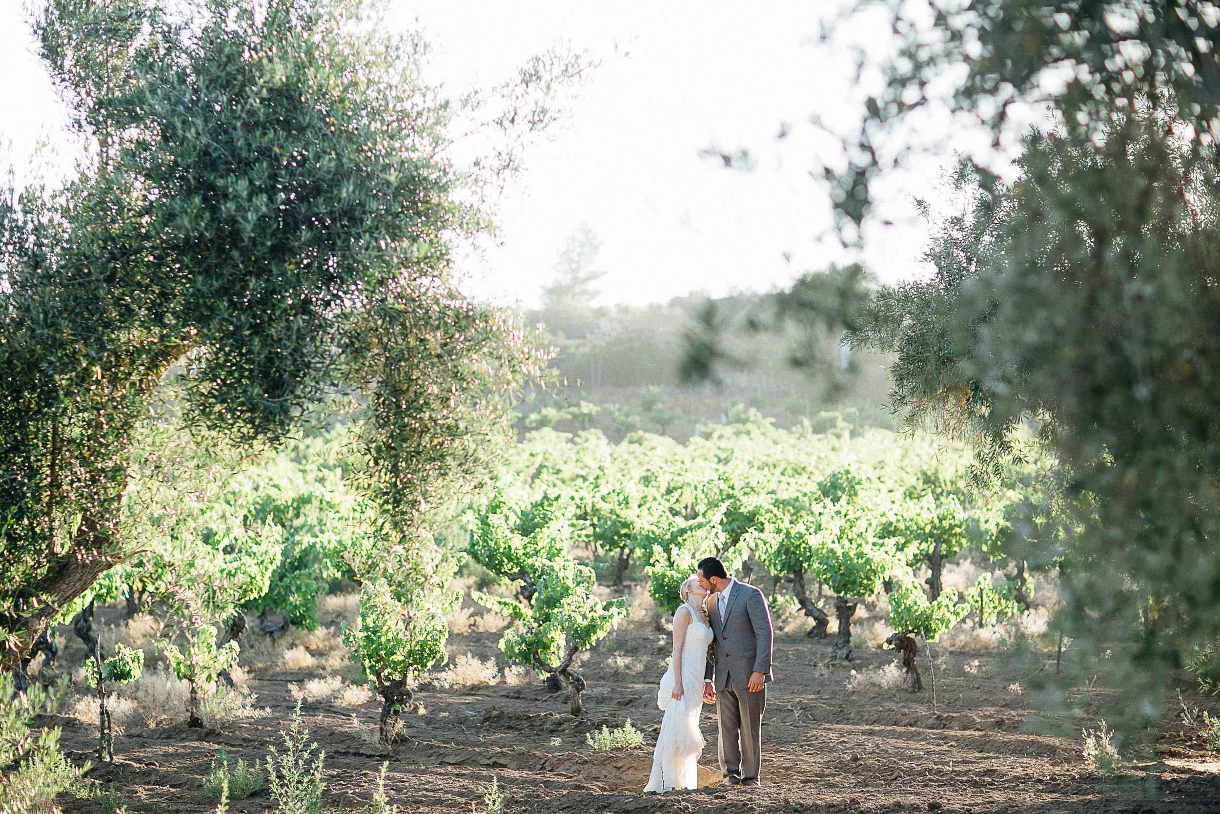 Chris & Rachel | Valle de Guadalupe Wedding