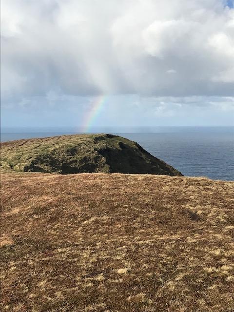Daily rainbow sighting