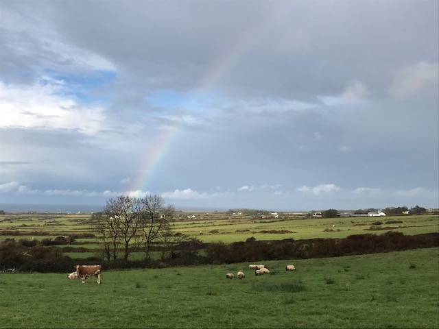 OK - since I started this rainbow a day thing….let's see how long this lasts. This is driving back over to Ballycastle ( village in distance.)