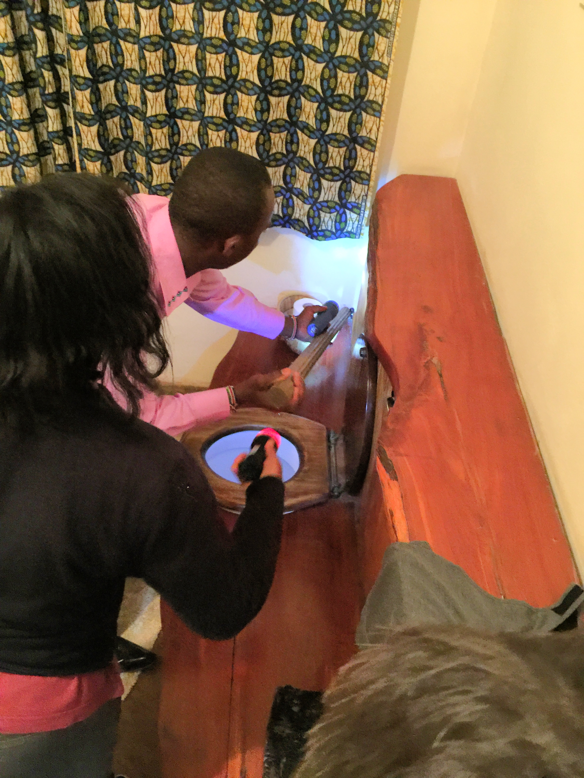The Lewa Lodge staff pushing the snake back down the hole it came from.