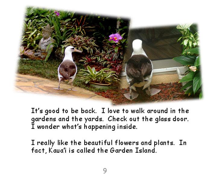 page09.jpg