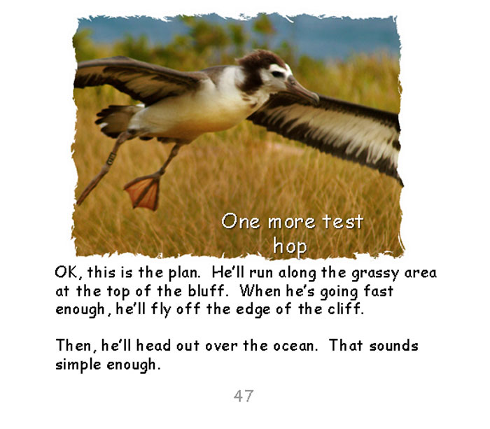 page47.jpg