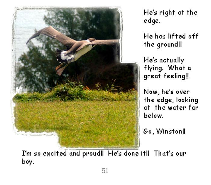 page51.jpg