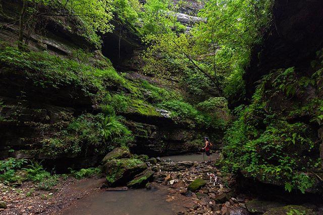 Dang, Arkansas. 🙌🏻 #natureitup #indiancreek #explorearkansas