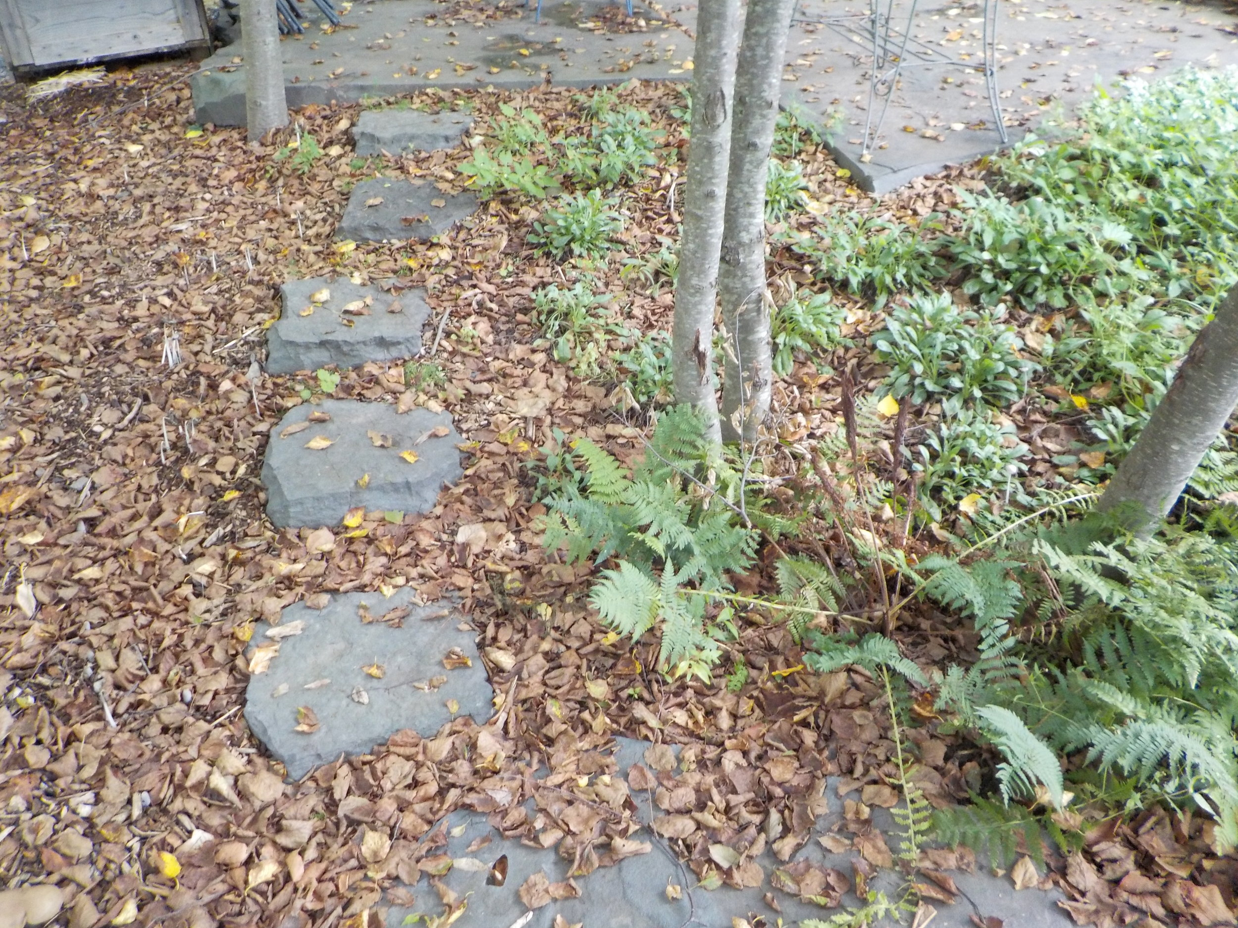 2-Alcove Stepping Stones.JPG