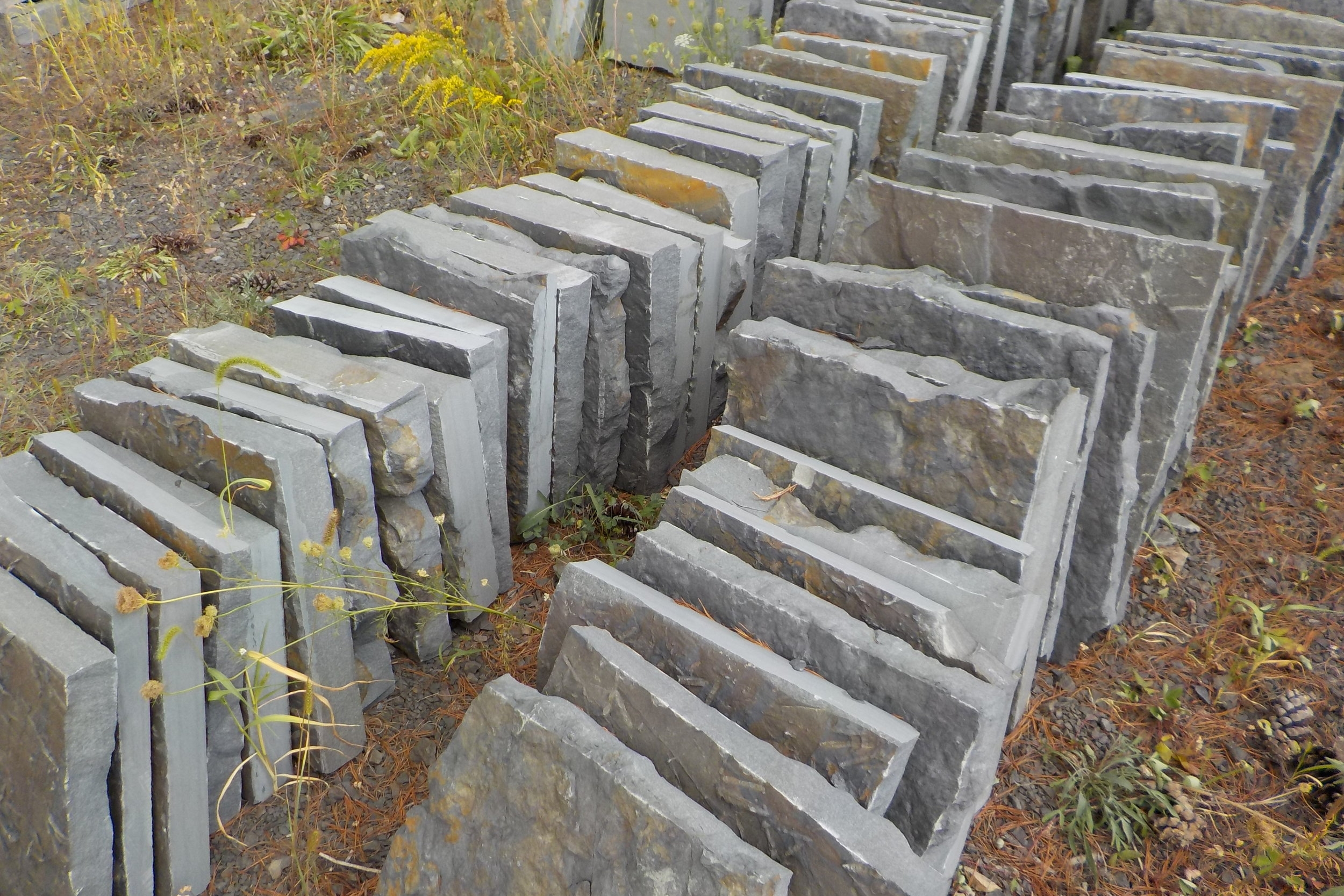1-Alcove Stepping Stones.JPG