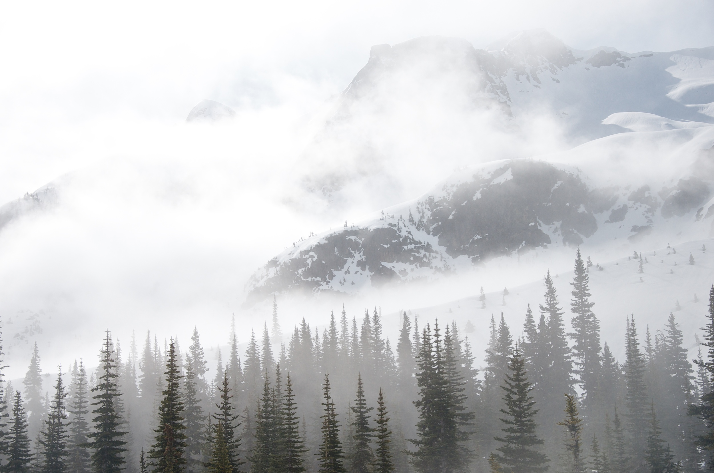 Morning near the Misty Icefields.