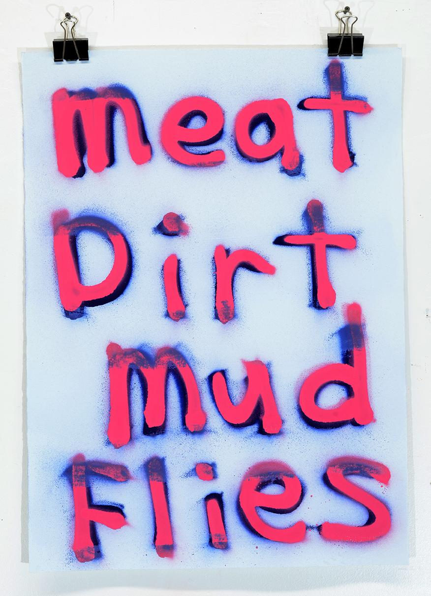 Meat Dirt Mud Flies