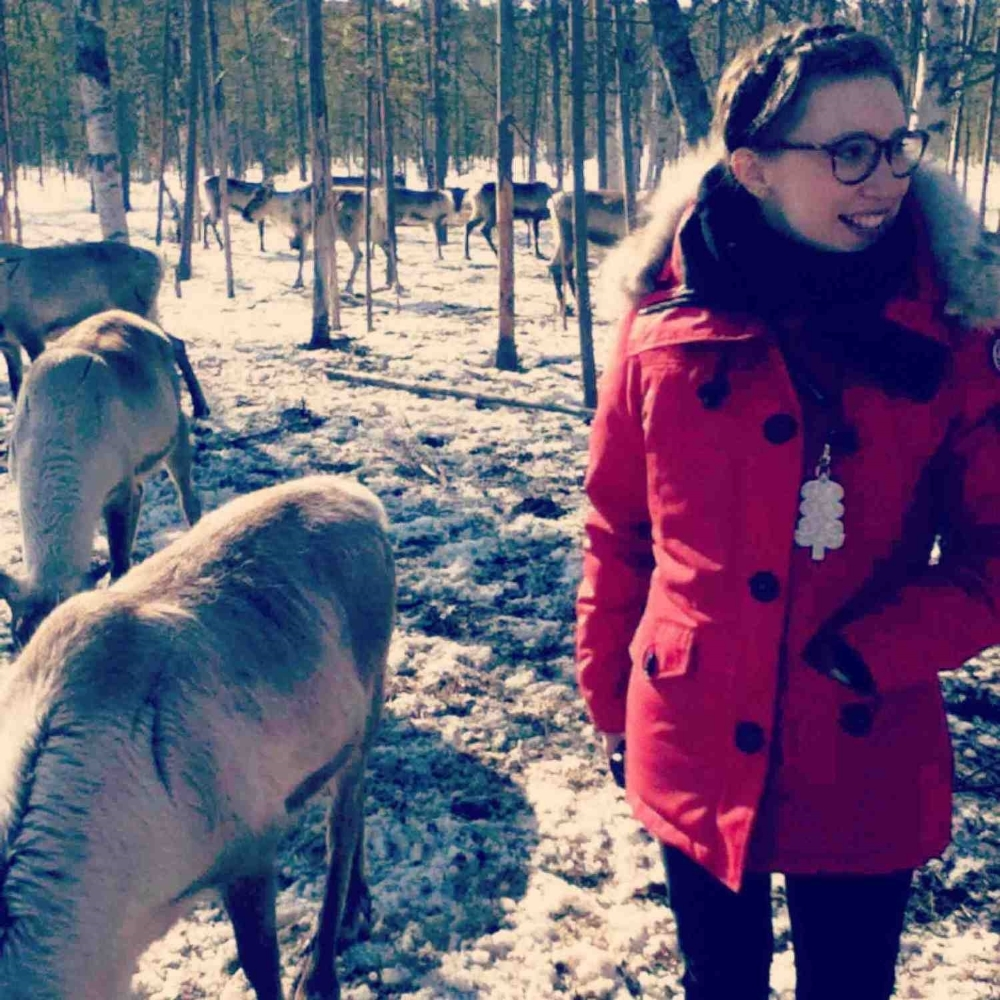 TP_Lapland.jpg