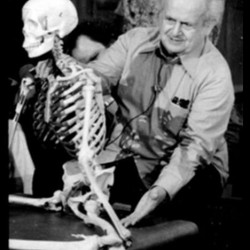 © International  Feldenkrais ® Federation Archive