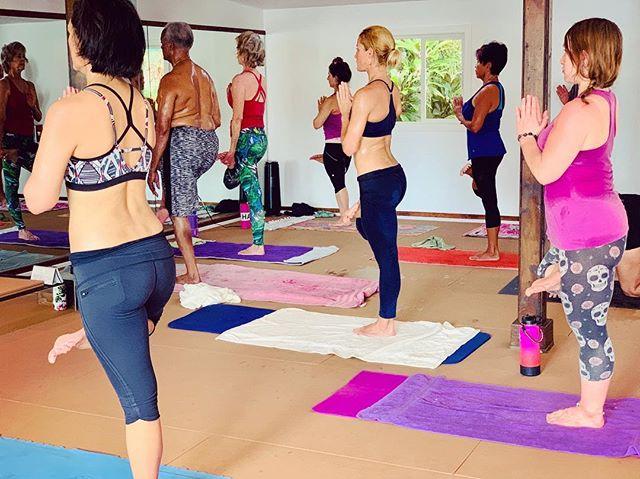 Tree 🌲Tadasana  Right when it all slows down, Stretching up , standing tall, opening your hips and taking care of your knees comes to play.  #bikramyoga #yogaforbeginners #yogaforeveryone #tadasana #treepose #locktheknee #hotyoga #yogatime #yogaforall #hawaiiyoga #yogaclass #yogis #yogaforhealth #yogacommunity #yogaforthepeople #yoga #yogapose #yogaasana #yogalife #yogalifestyle #getthefirestarted