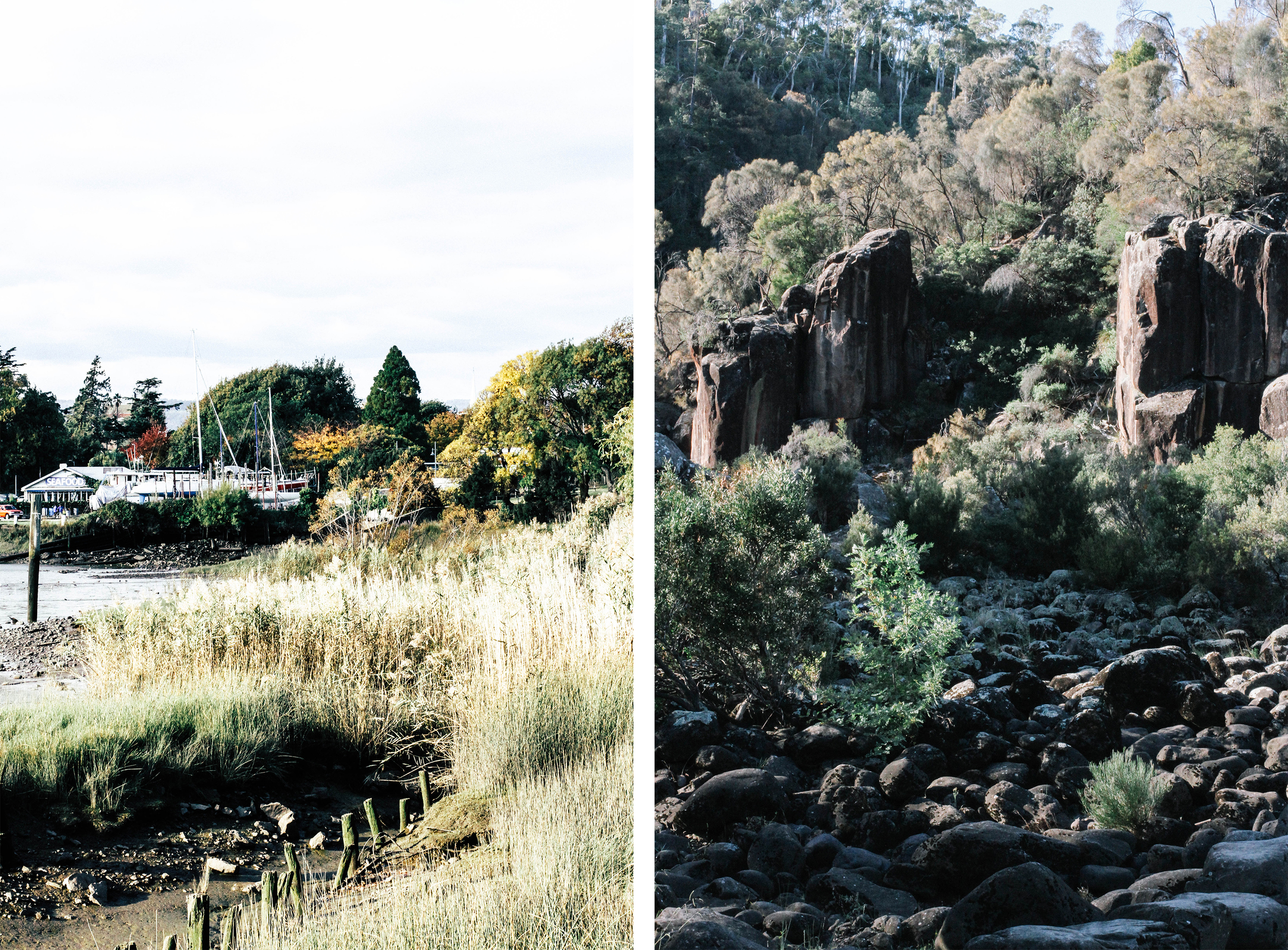 Launceston Guide⎜The Botanical Kitchen