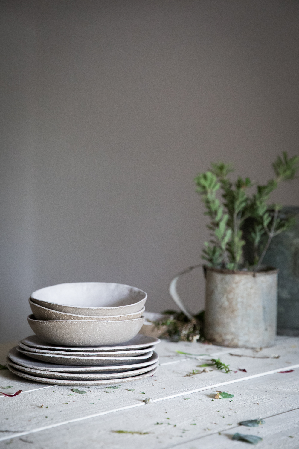 Interview with Cindy Hamrey from Nest & Nettle⎜The Botanical Kitchen