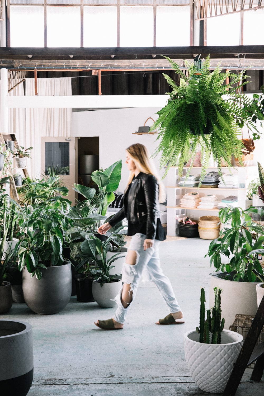 Interview with Lauren Lance from The Borrowed Nursery⎜The Botanical Kitchen