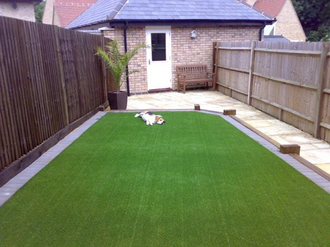 artificial-grass-for-pets.jpg