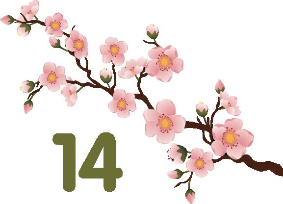 Spring14Logo2
