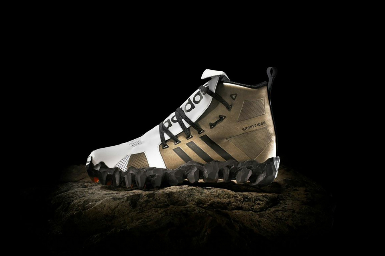 aditerra shoe.jpg