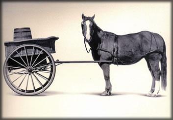 cart-before-the-horse.jpg