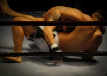 MMA-fighting-free-license-CC01.jpg