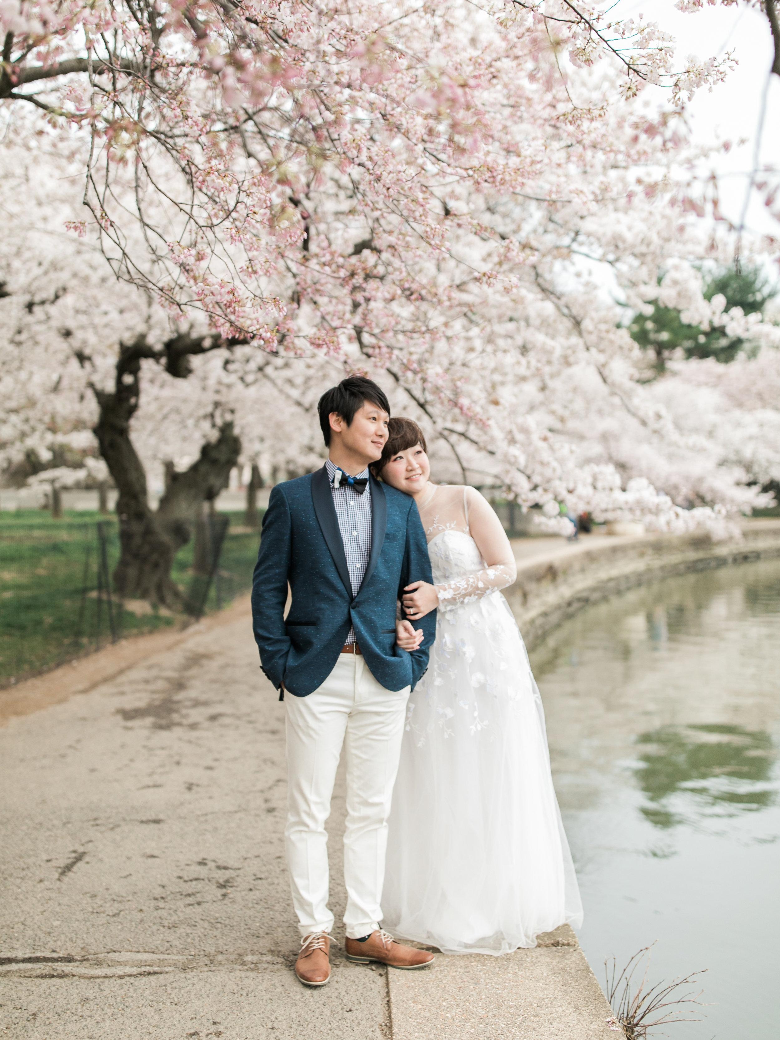 cherry-blossom-engagement-photos7.jpg