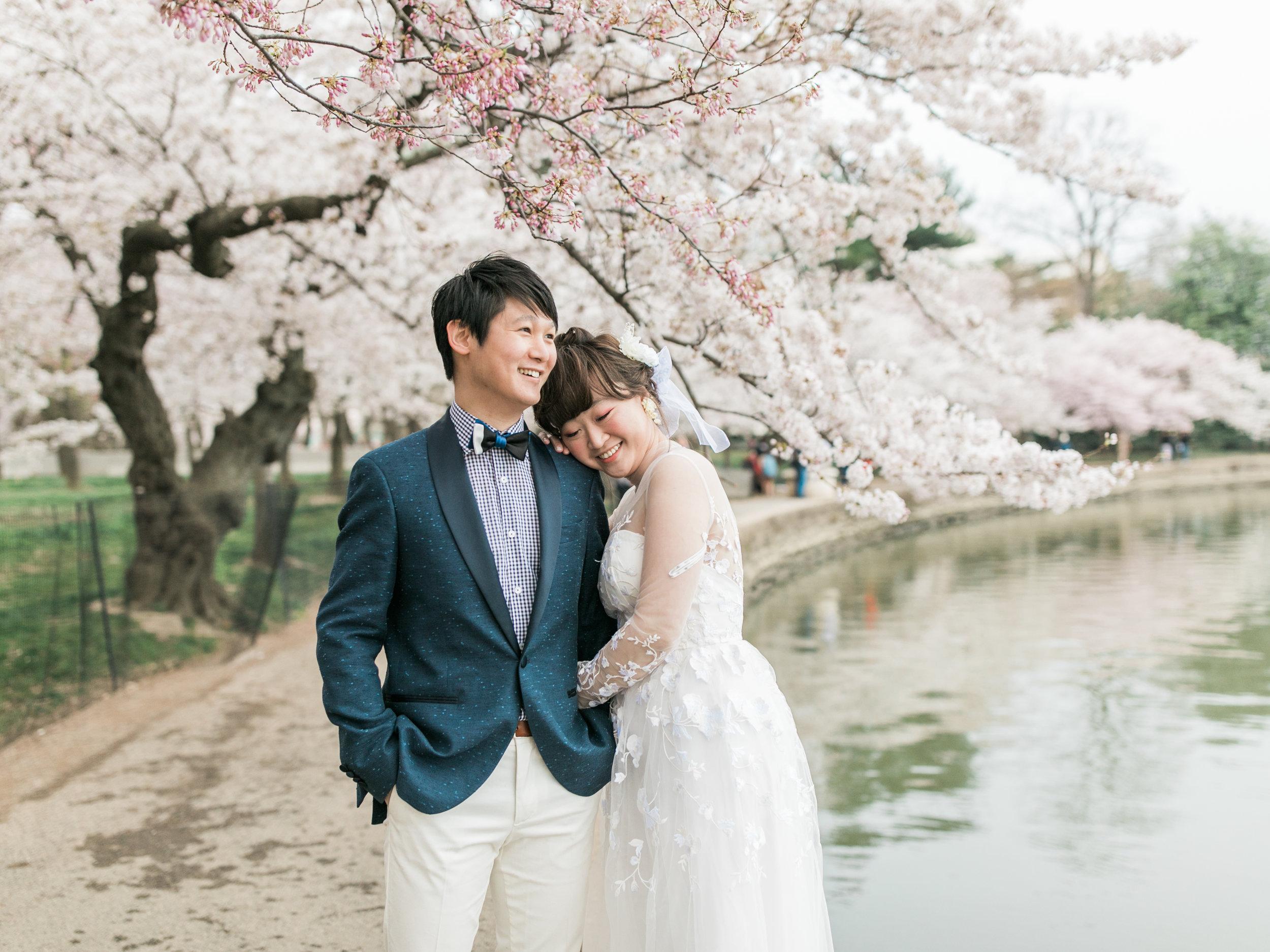 cherry-blossom-engagement-photos3.jpg