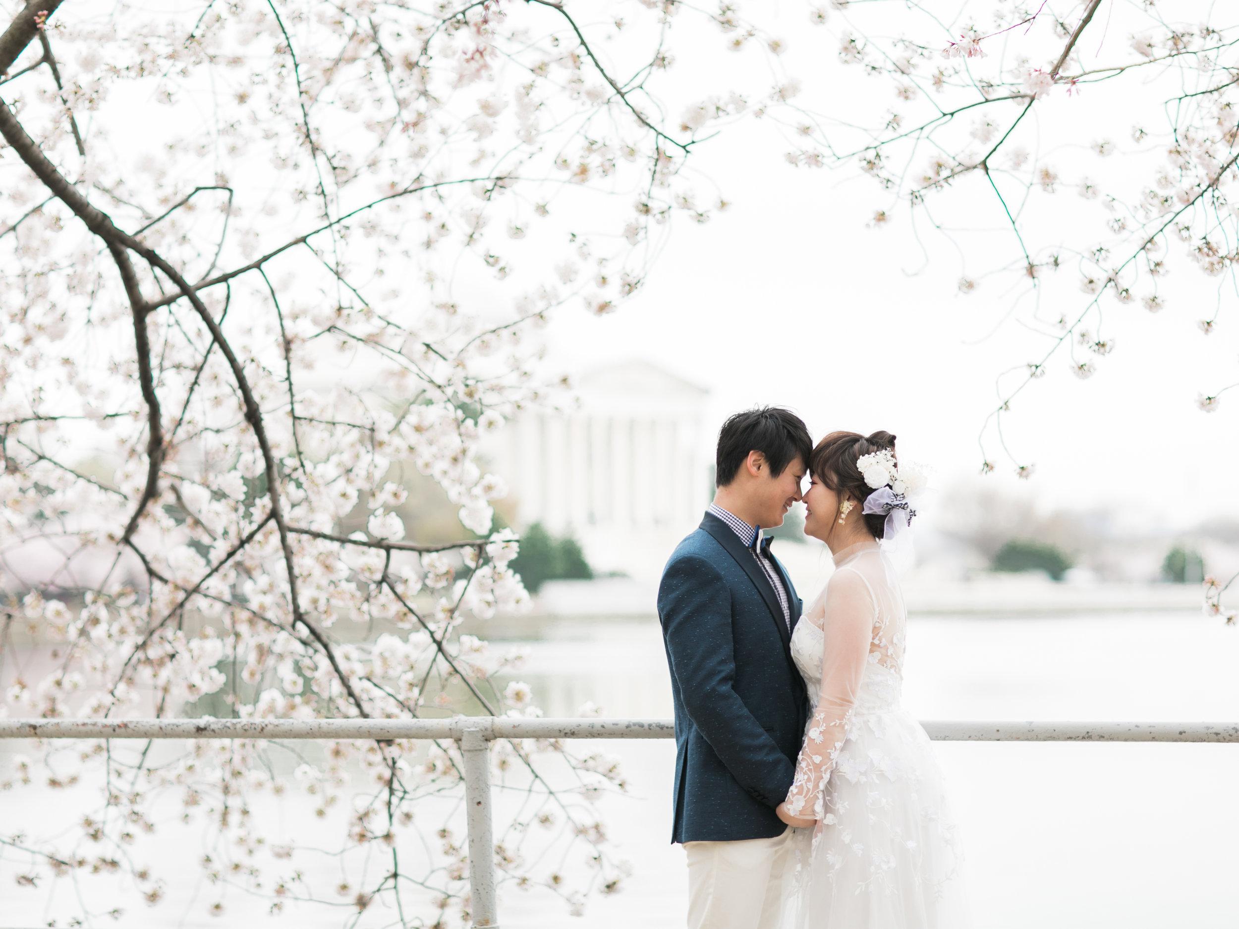 cherry-blossom-engagement-photos58.jpg