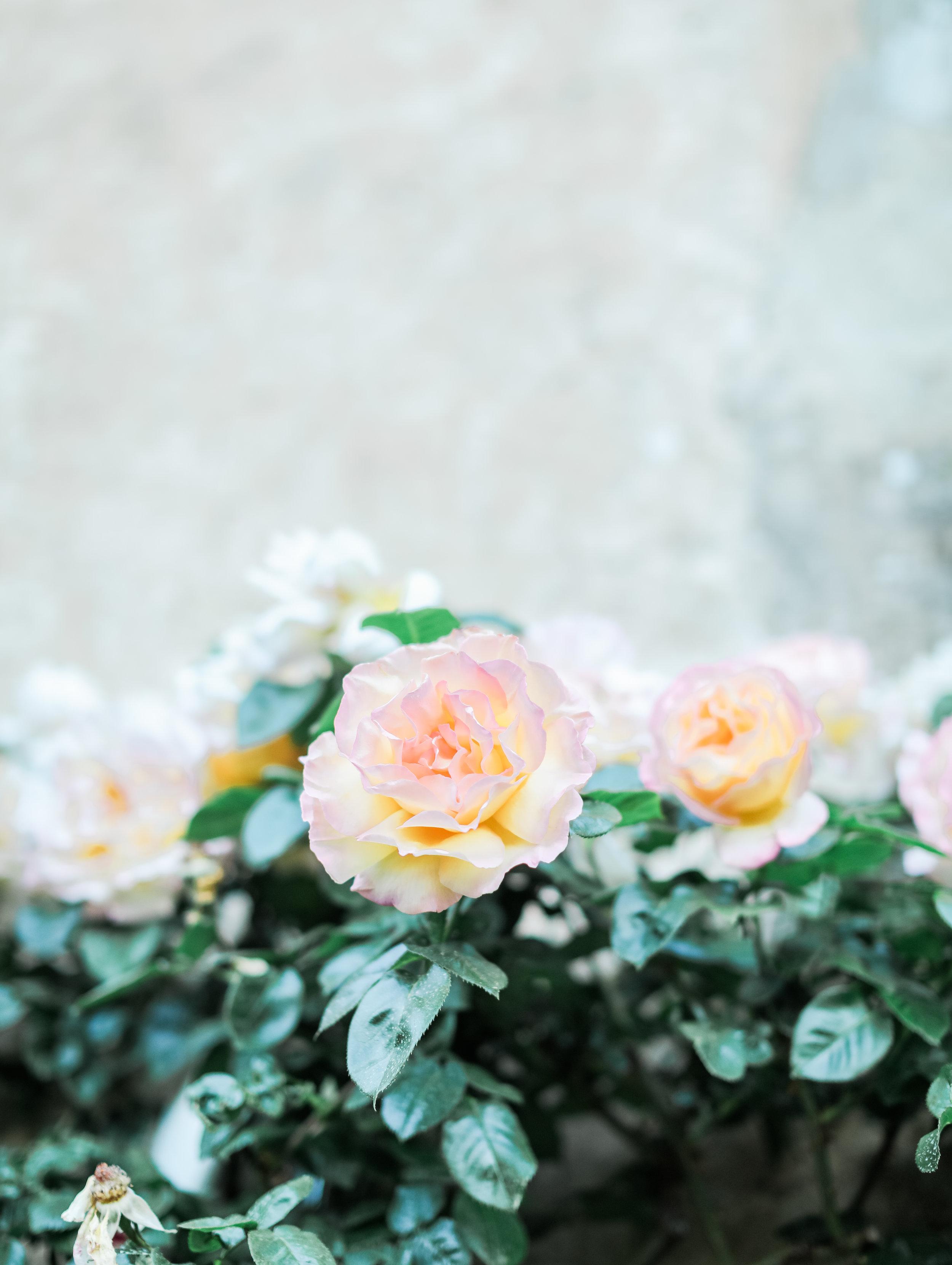 tuscany-wedding-photographer-91.jpg