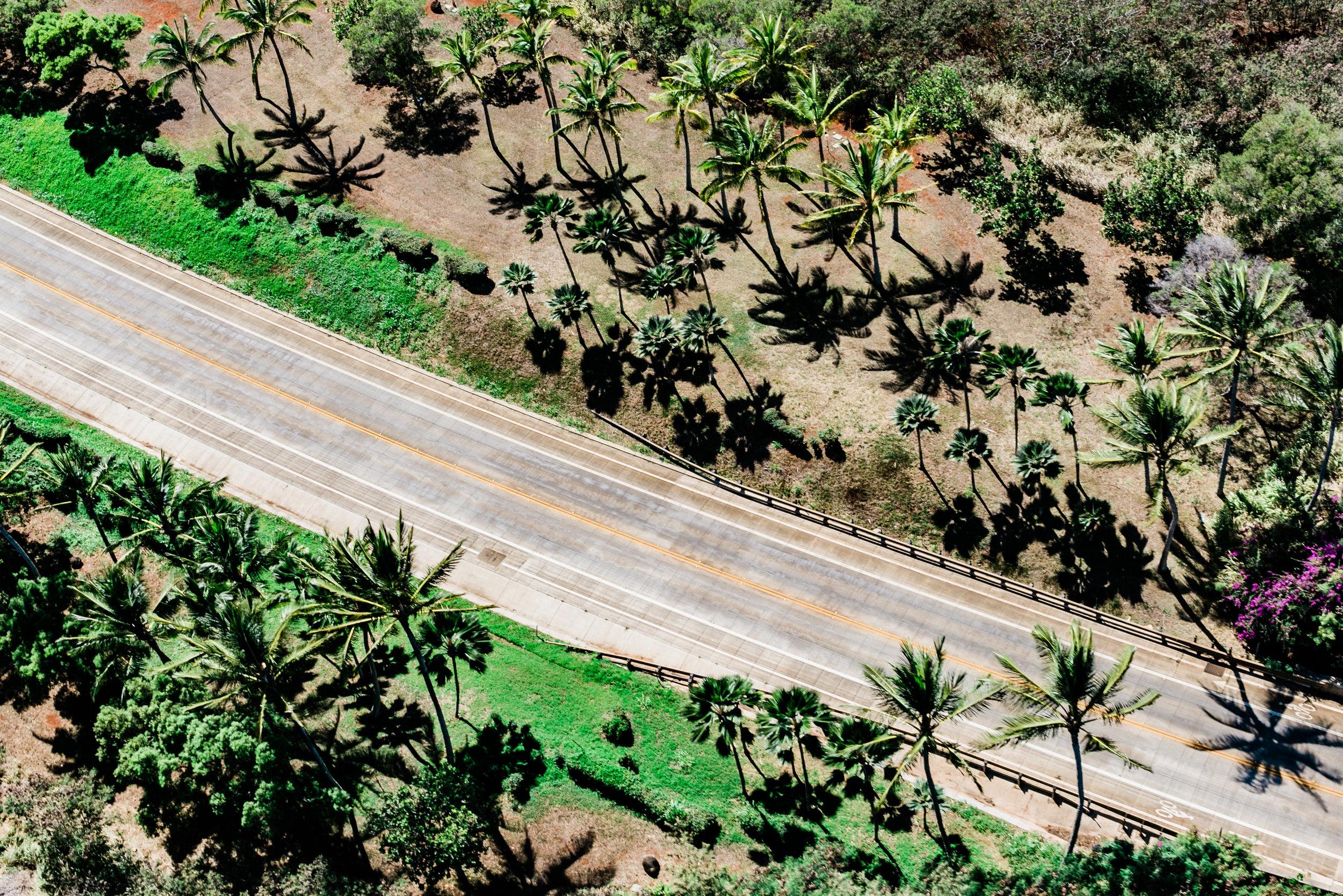 Kauaiphotos0449.jpg