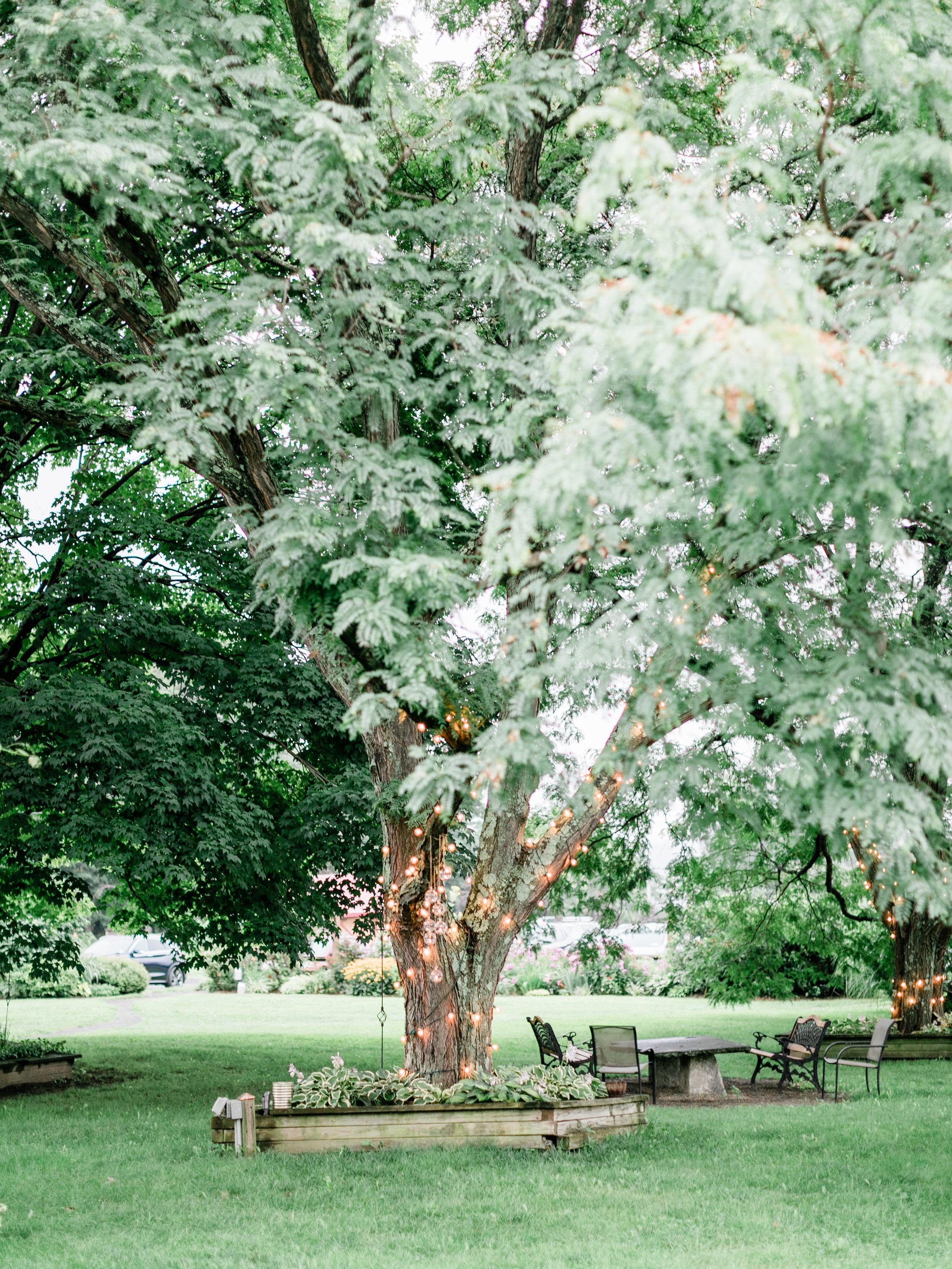 asher-gardner-red-maple-vineyard-0480.jpg