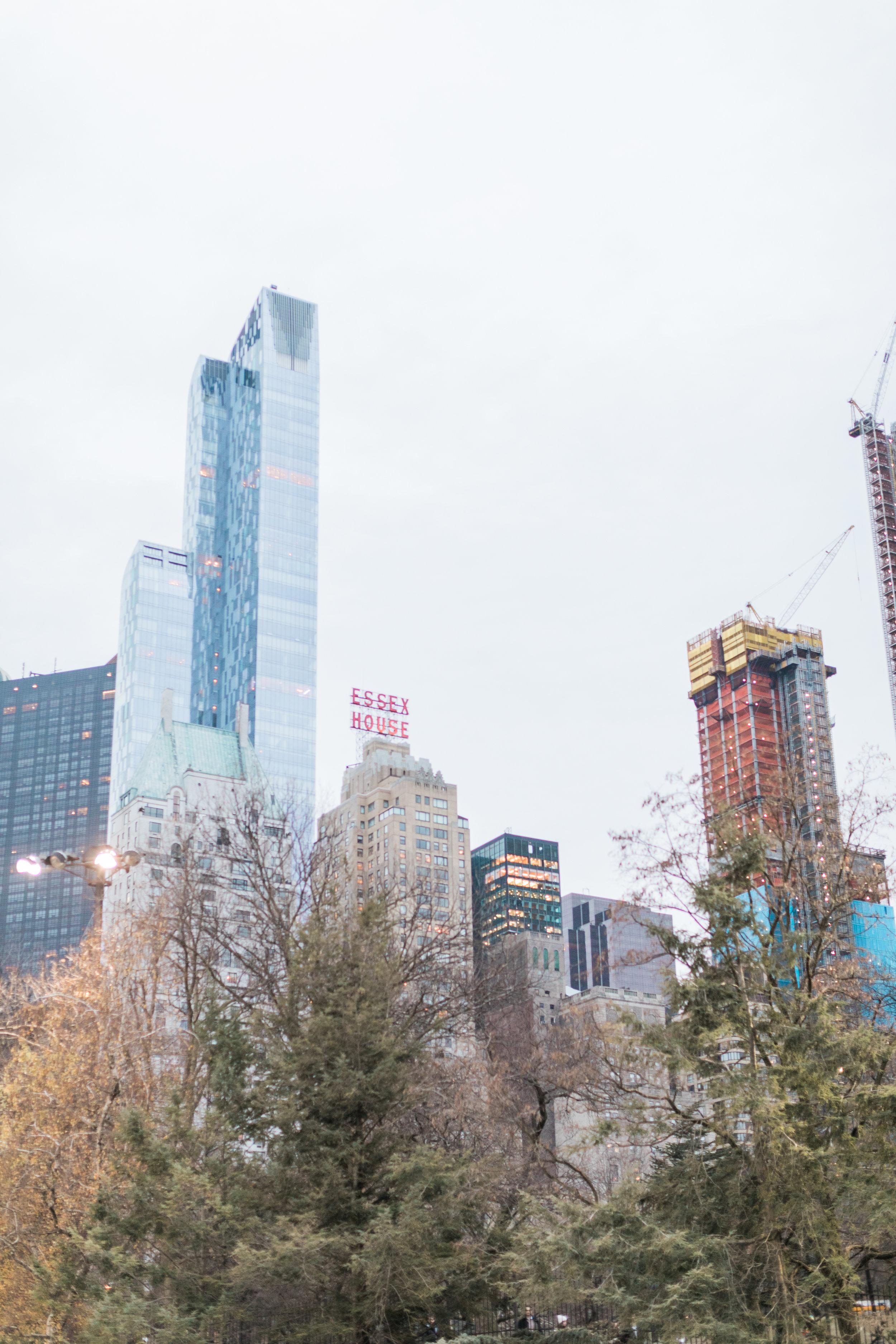 Winter-Central-Park-Engagement23.jpg