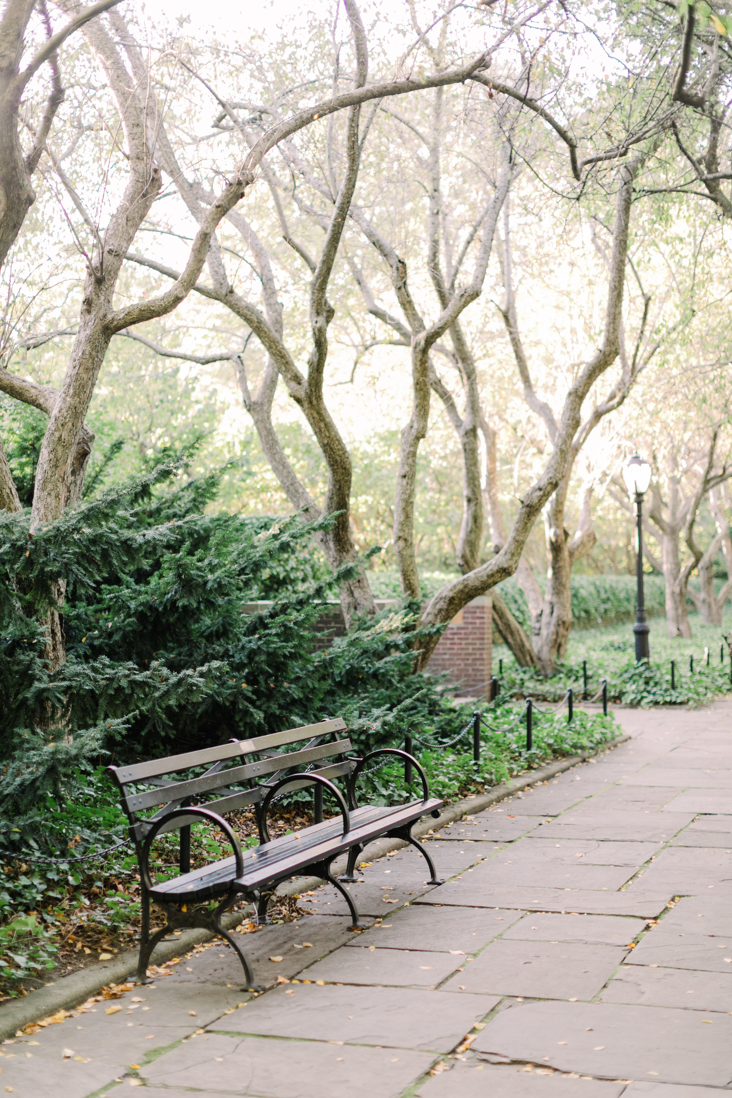 central-park-engagement-photographer2.jpg