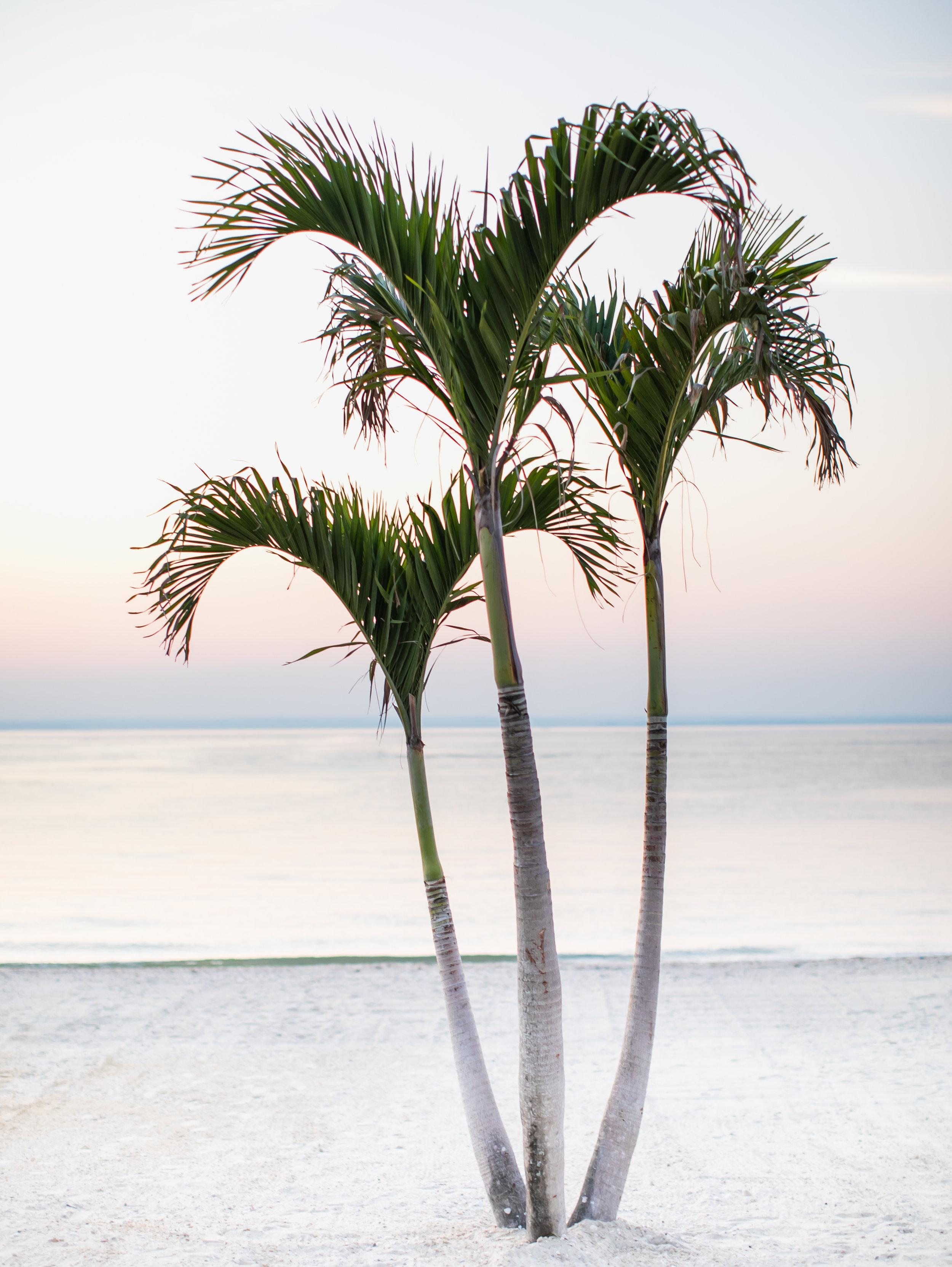 asher-gardner-cresent-beach-club-00866.jpg