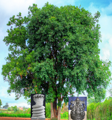 ganesha_peepal_tree.png