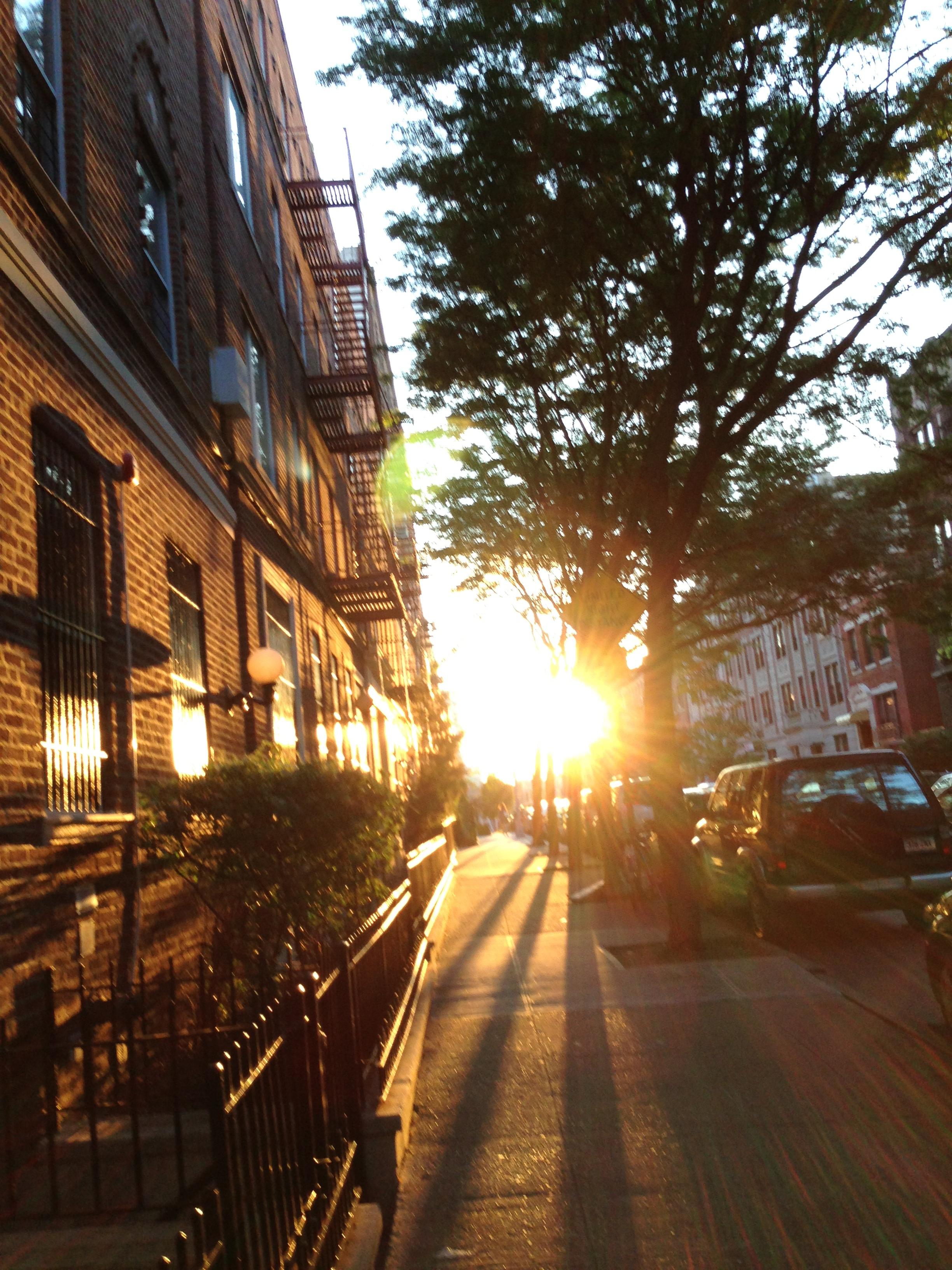 Brooklyn, NY, 7/30/13