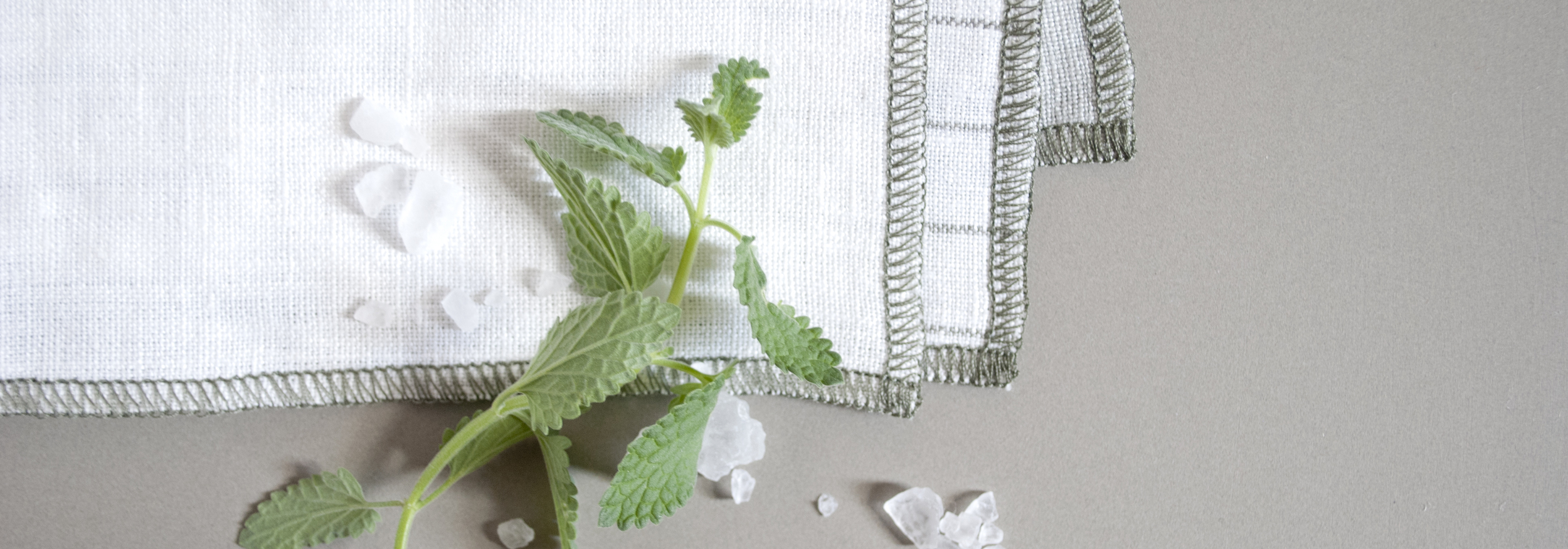 the-everyday-napkin-boston-cloth-reusable