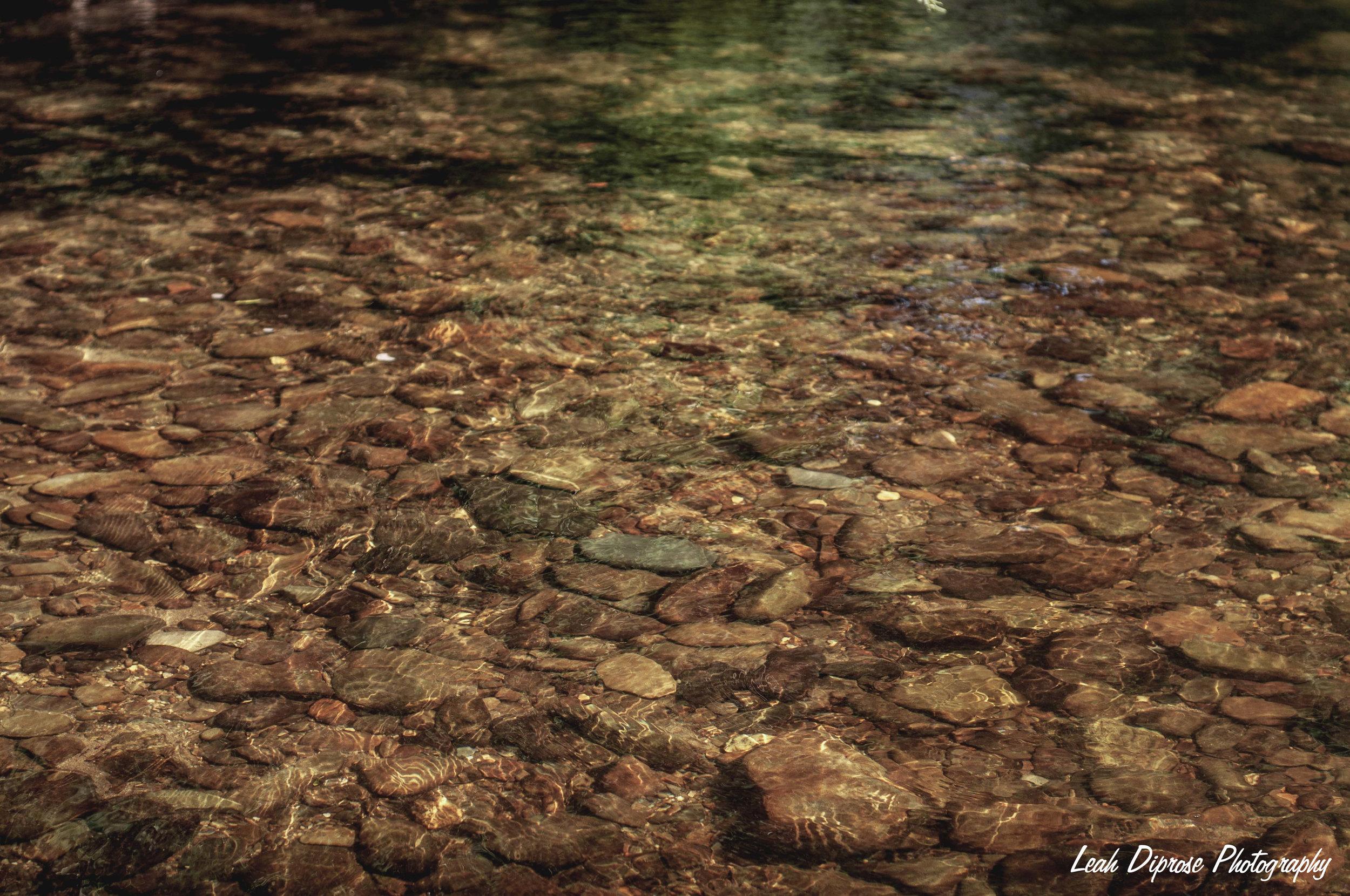 Leah Diprose Photography image-6195.jpg