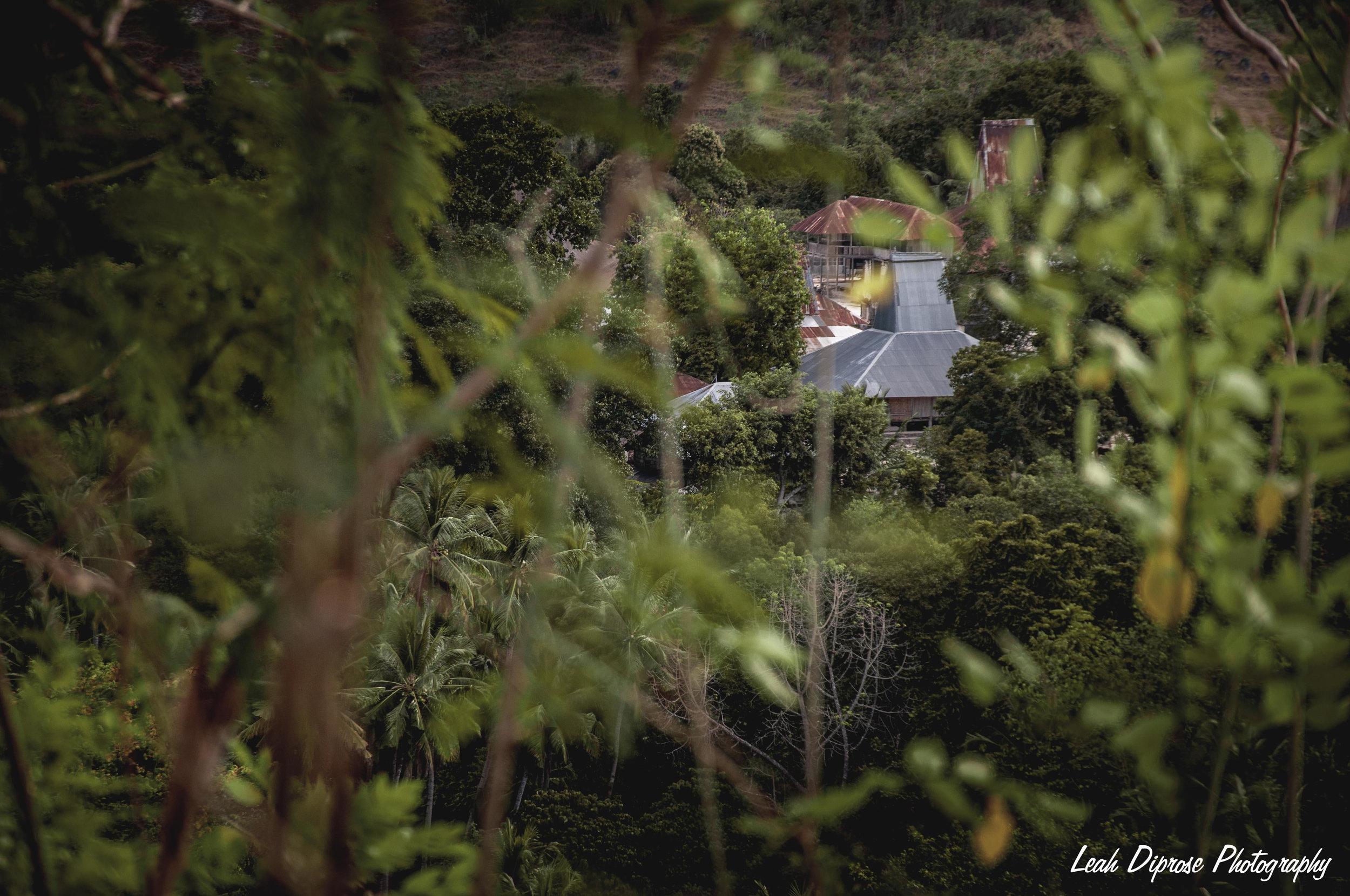 Leah Diprose Photography image-5233.jpg