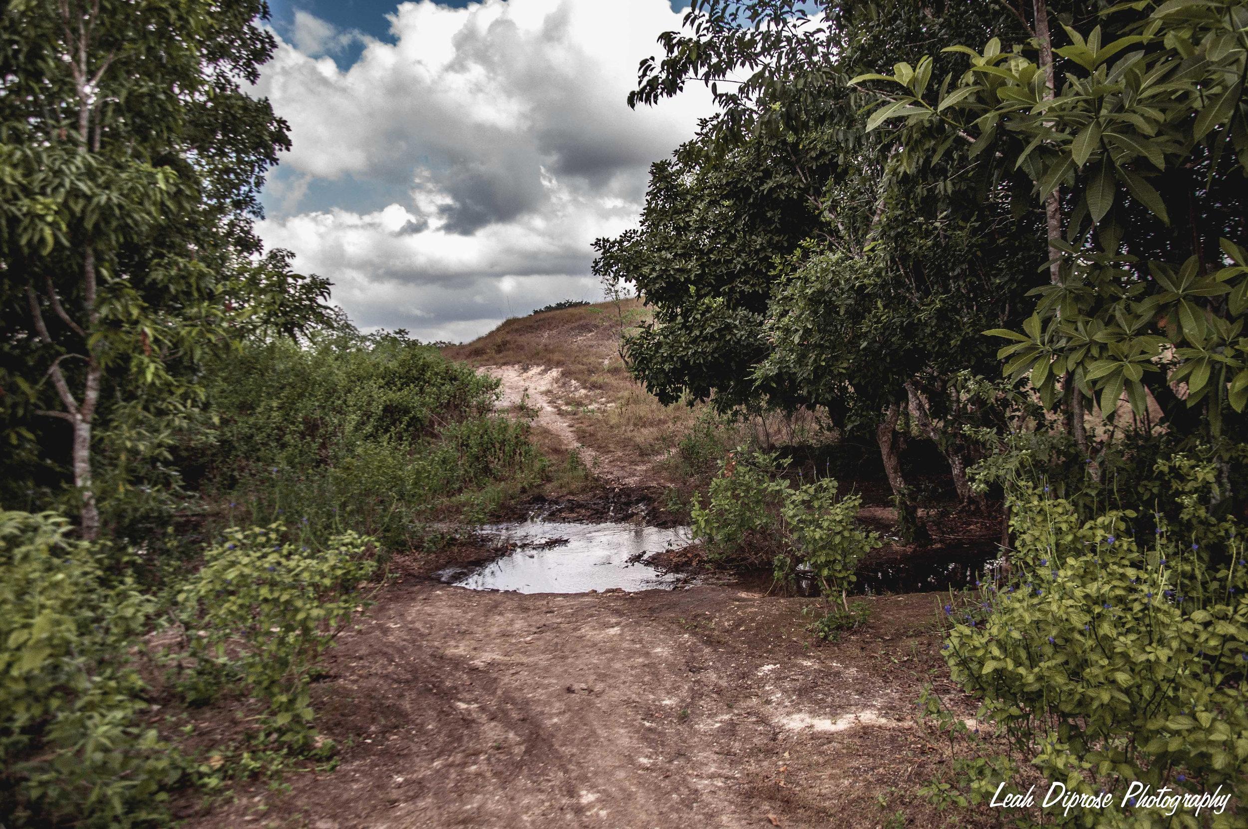 Leah Diprose Photography image-5330.jpg